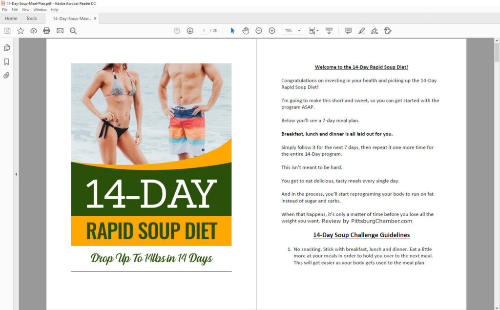 14-Day Rapid Soup Diet Book Table Of Content